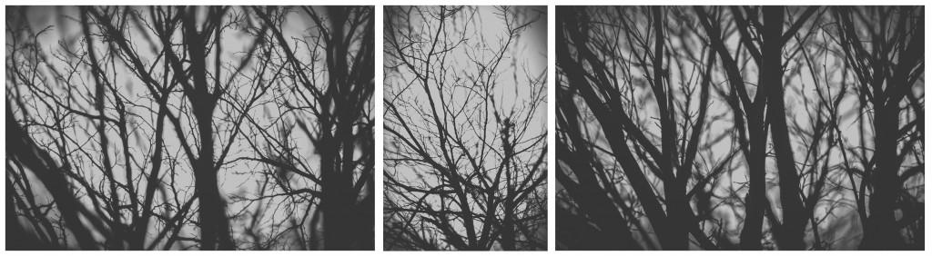 Tríptico realizado con imágenes de Salamanca en Blanco y Negro descontrastado